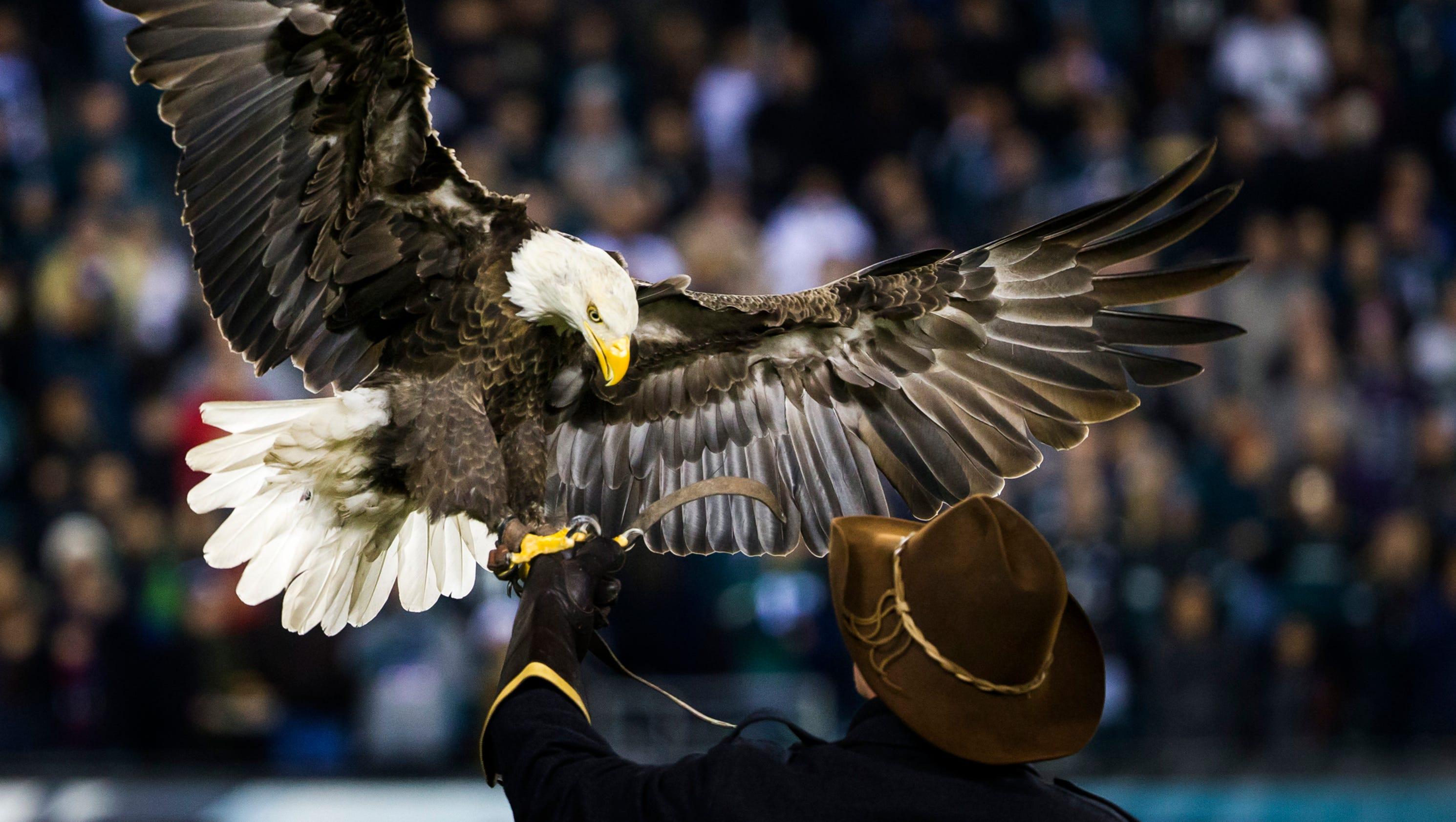 Eagles 24 Giants 19