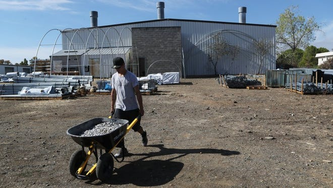 Ivan Schreder hauls gravel to a demonstration greenhouse on Oct. 12, 2016, at Emerald Kingdom Greenhouse in Redding.