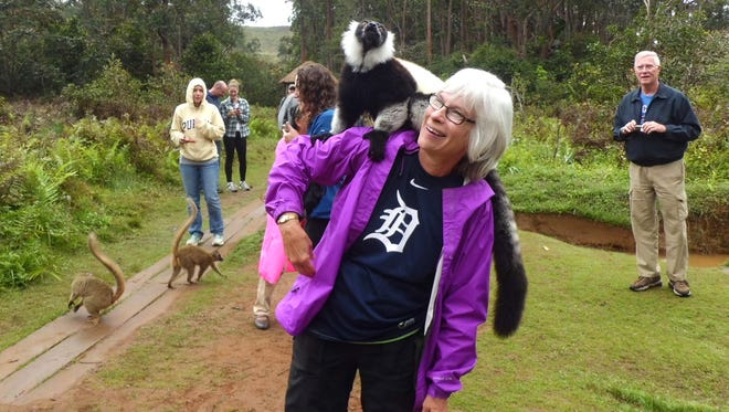 Shirley Nowakowski of St. Johns, Mich., was on a medical mission in September  to Madagascar. While she was there, she took a side trip to a lemur park, near Antsirabe, Madagascar. Soon, lemurs were sitting on her shoulder just above that old English D.