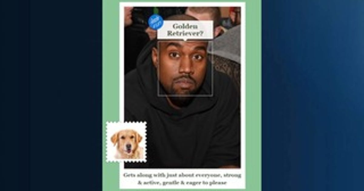 App tells you what breed of dog you resemble for App that tells you what is in a picture