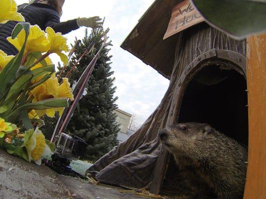 635900202821734374-Woody-Groundhog-Day-02.jpg