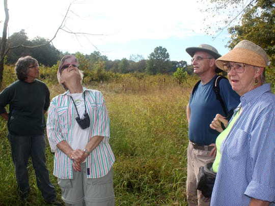Sarah Lester (left to right), Pat Ampher, Mark McGinnis and Eileen Ampher admire the wetland area being restored on 152 acres in the Licking River watershed during a hike on a recent September morning. Photo taken Sept. 27, 2014 The Enquirer/Carrie Blackmore Smith <137>CQ<137>