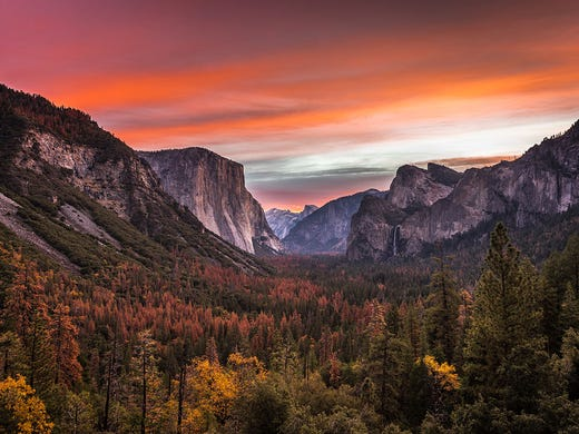 National Parks Pass  The best  80 you ll spend 39c7f575c8db