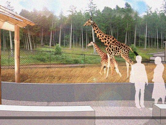Proposed giraffe exhibit at Seneca Park Zoo.