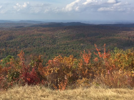 Cherohala Skyway is among the best places to view fall colors.