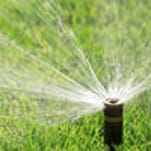 Titusville reclaimed water is not to be used until further notice
