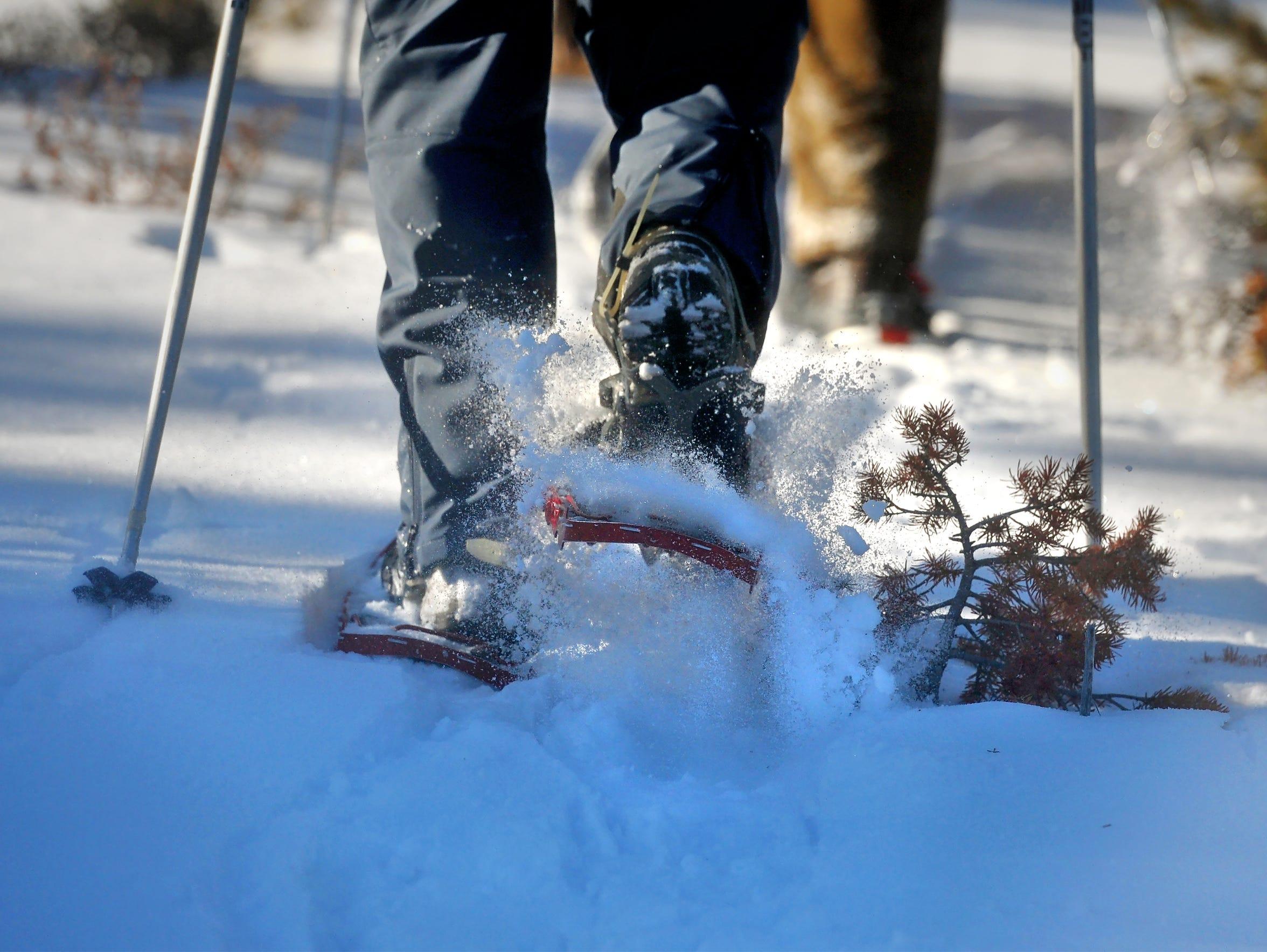 Snowshoeing through the Big Snowy Mountains.