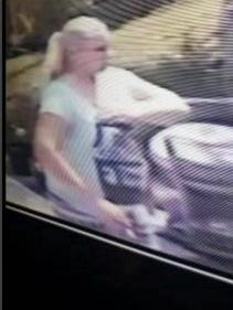 A white female burglary suspect is being sought in relation to a burglary on Robert J. Conlan Blvd.