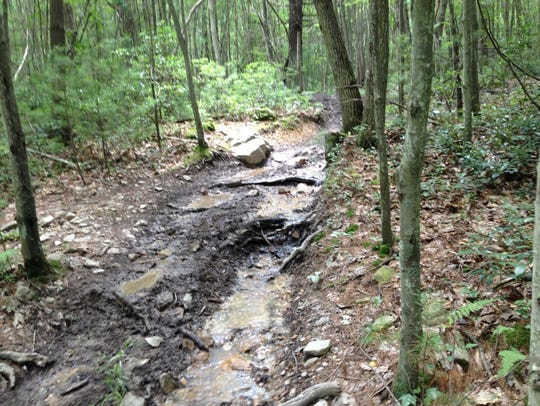 As it makes its way downstream, eroded soil and the