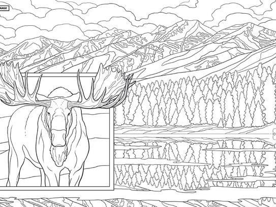 "A coloring page from ""Montana Coloring Book"" by Ted"