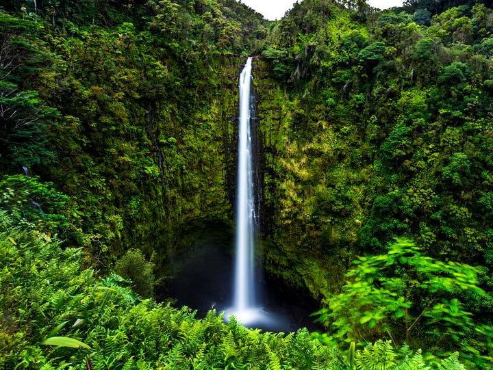 Akaka Falls, Big Island.