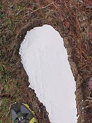 A larger than imagined footprint found in the Mississippi woods.