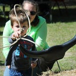 As his mother Emily watches, Jackson Harrell of Merritt Island, 2, tries his hand at roping cattle during the Pioneer Days celebration at St. Luke's Episcopal Church and Sam's House in Merritt Island