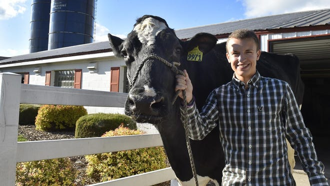 """Jordan Ebert of Ebert Enterprises, Algoma, provided and handled Reaction, the Holstein appearing in the movie """"The 60 Yard Line.'' The cow's stage name was Mitch."""