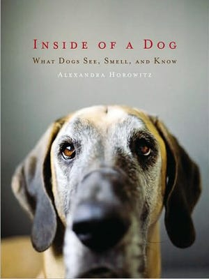 Dr. Horowitz's book, 'Inside of a Dog: What Dogs See, Smell, and Know' grabbed the nation's attention and shed light on the mind of Man's Best Friend.