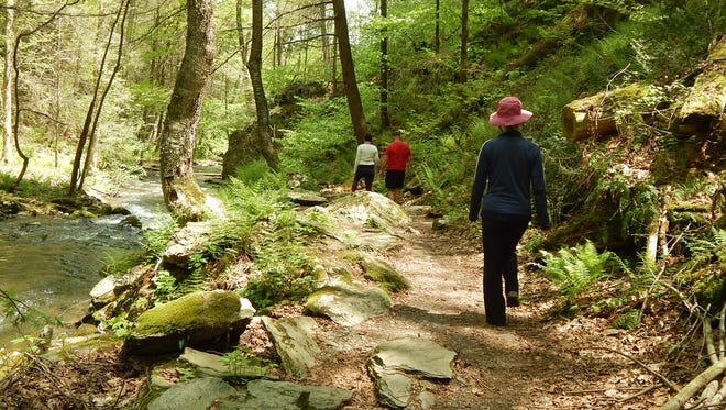 Hikers enjoy a trek along the Dover Stone Church Trail in eastern Dutchess County. The trail is maintained by Friends of Dover Stone Church.
