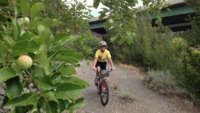 Apple trees line parts of the Floriston-to-Farad link in the Tahoe Pyramid Bikeway. The link was only possible through an agreement with an energy company to cross the property of a defunct power plant.