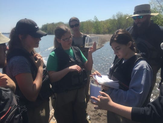 Shelby students collected water quality and wildlife
