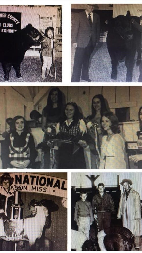 Images from past 4-H competitions.