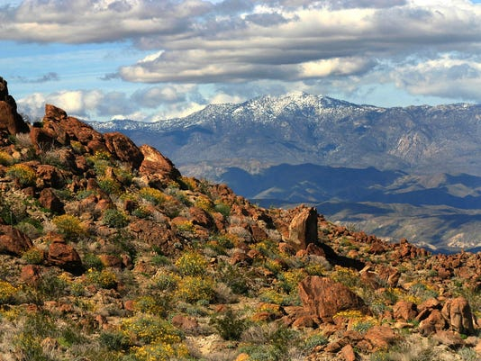 650,000-acre Anza-Borrego Desert State Park makes it home in Borrego Springs