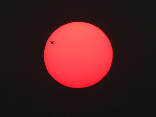 Standalone-Sun-With-Bird.JPG