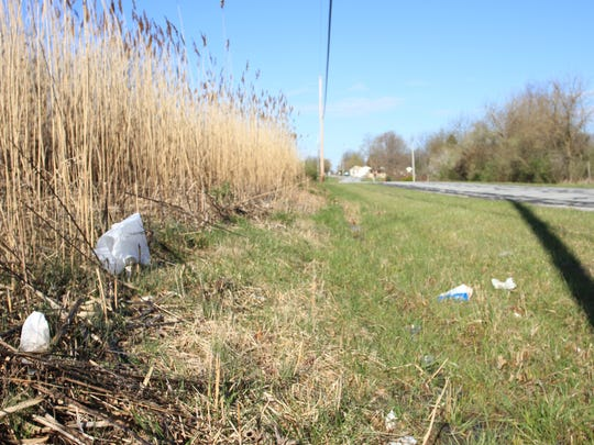 Drive just about anywhere in the city, including Adams Lane, pictured here, and you will see litter. The city is preparing to host its annual citywide spring cleanup.