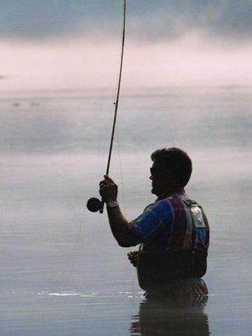 Find out where they are biting and what they are biting