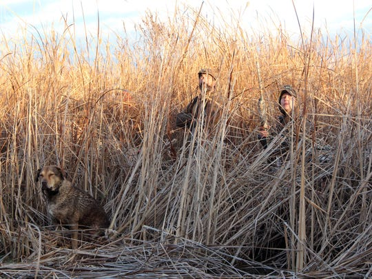 Bryan Muche (left) of Barrington Hills, Ill., and Jessica Schultz of Baraboo look for ducks while Dutch, a Chesapeake Bay retriever owned by Muche, waits for the next opportunity to make a retrieve during a hunt on Horicon Marsh in November.