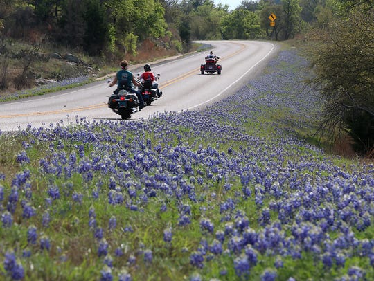Bluebonnets make for a eye catching drive between Llano