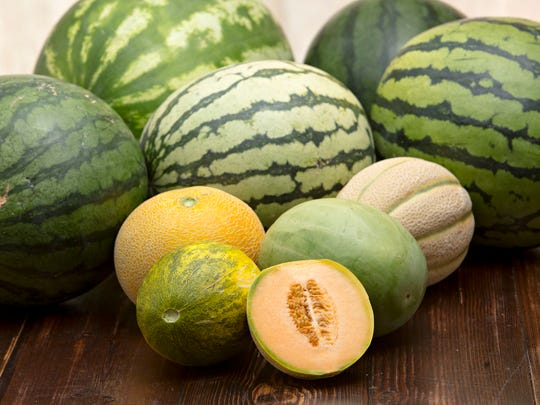 A variety of melons grown by long time Valley farmer, Pat Duncan. As seen in Phoenix on June 26, 2014.