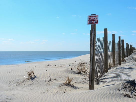 Assateague State Park and Assateague Island National