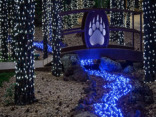 Thousands of lights decorate Bearizona's Wild Wonderland.