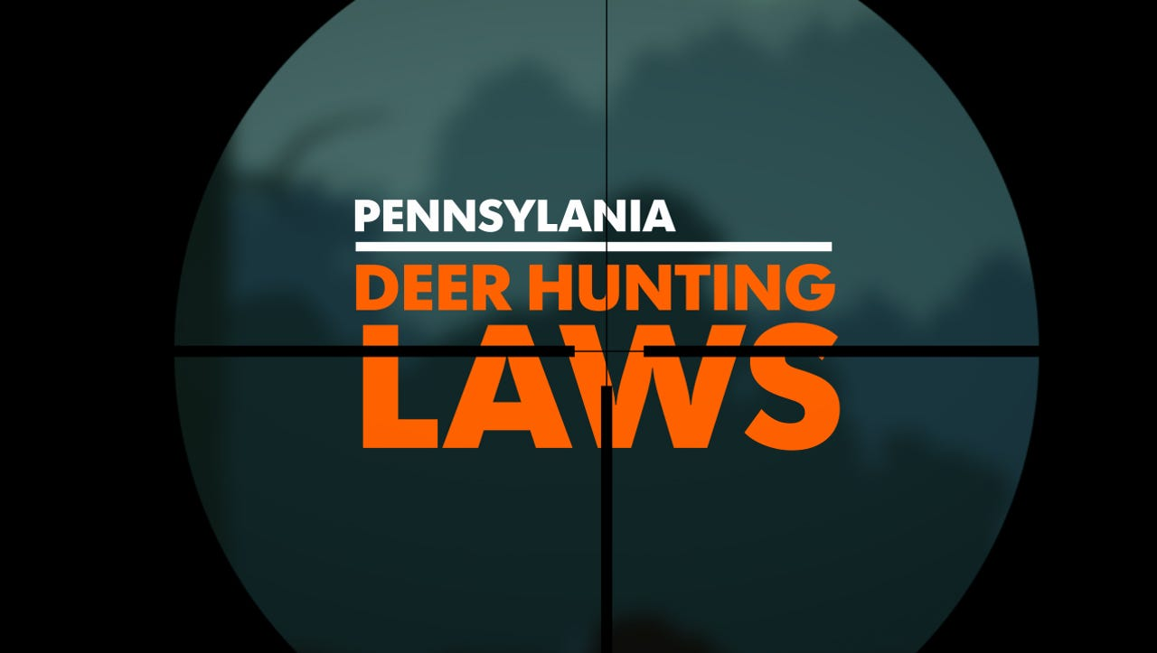 Pa  hunting licenses: Internet update blocks some from