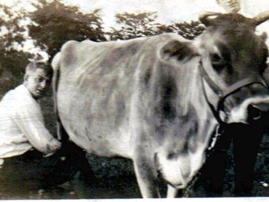 635993457251035193-Dairy-Bessie.jpg