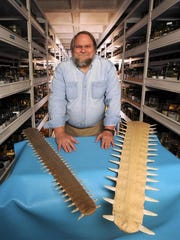 In this file photo, 'Smalltooth Sawfish: America's First Endangered Marine Fish' presented by George Burgess, director of the Florida Program for Shark Research at the Florida Museum of Natural History, University of Florida is at the Rookery Bay Learning Center.