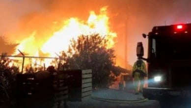 Cal Fire firefighters responded to a vegetation fire early Sunday on Tyler Street in Coachella. No injuries were reported.