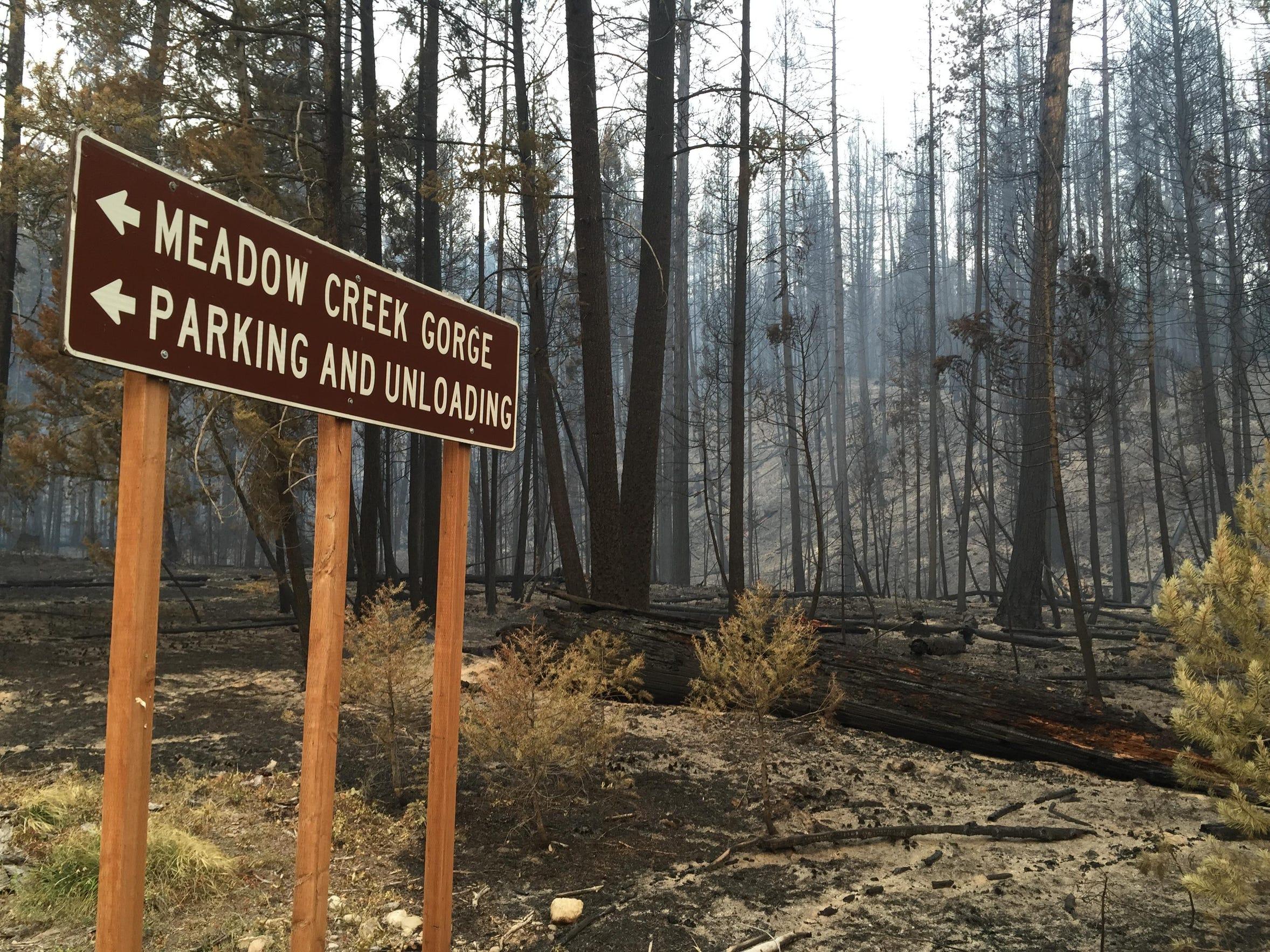 -bear creek fire sign.jpg_20150902.jpg