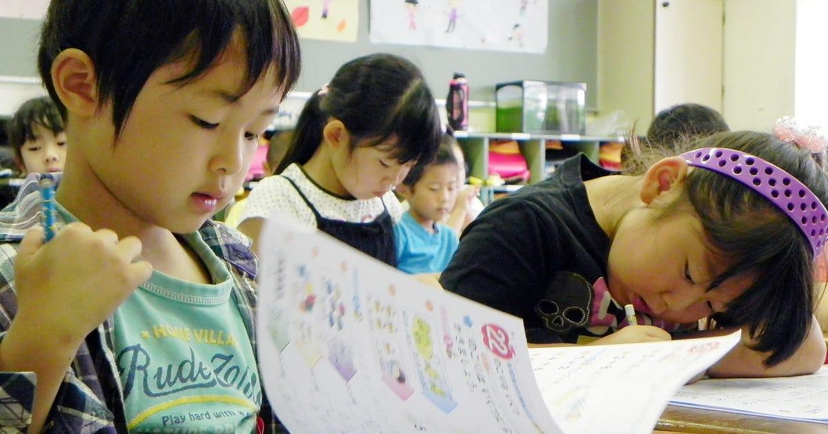 Asian school system essays