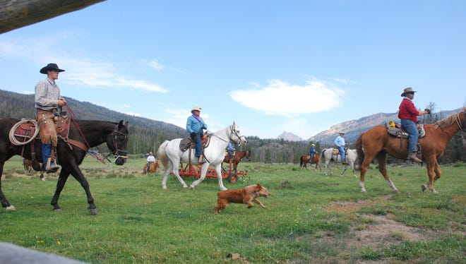 Guests at T-Cross Ranch prepare to pen cattle, with the help of wrangler Michael Harold, at left.