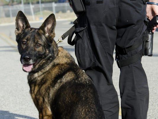 police dog 2.jpg