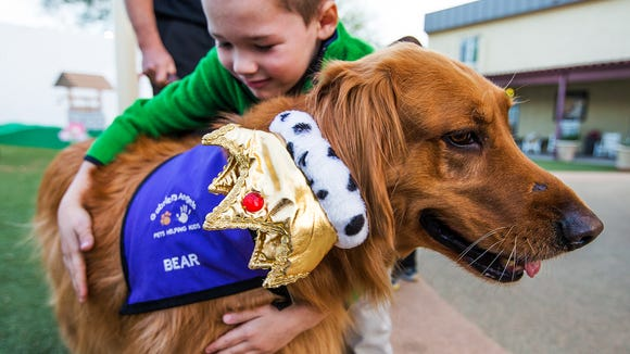 Bear, a 6-year-old golden retriever with Gabriel's Angels, gets a hug from fellow 6-year-old Carson, as the therapy dog visits the UMOM shelter in Phoenix, Thursday, January 8, 2015.  Two golden retrievers, Codi and Bear, were brought to the UMOM shelter in Phoenix to dole out healing therapy for at risk children. The hat on Bear was to celebrate his mother's (Codi) 10th birthday.