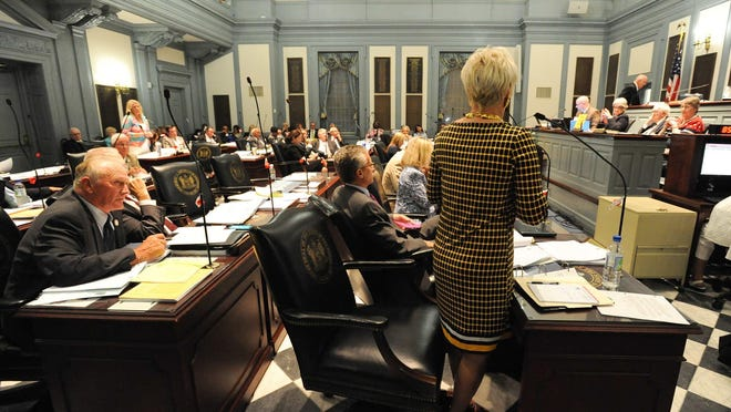 State Rep. Ruth Briggs King, R-Georgetown, speaks at Legislative Hall in Dover late Tuesday. Education policy was a major point of contention this year.