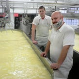 Economic losses from EU's generic cheese name policy could cost dairy industry billions