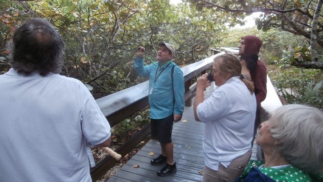 Naturalist Scott Schnauppauf points out and describes a knicker bean tree during a guided walk at Barefoot Beach.