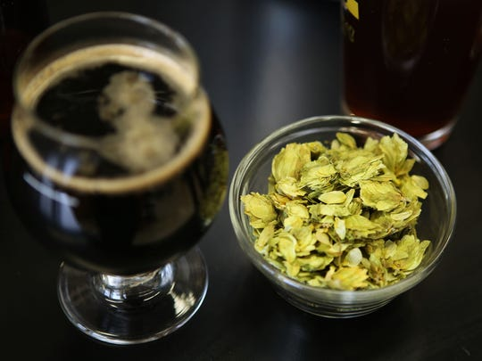 Hops will have a key role in Mount St. Joseph University's new class about brewing that will be offered this summer. Students will brew their own beer the second week.