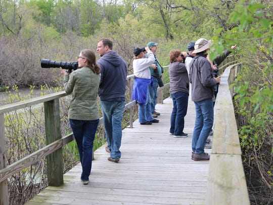 Though the Biggest Week in American Birding kicked