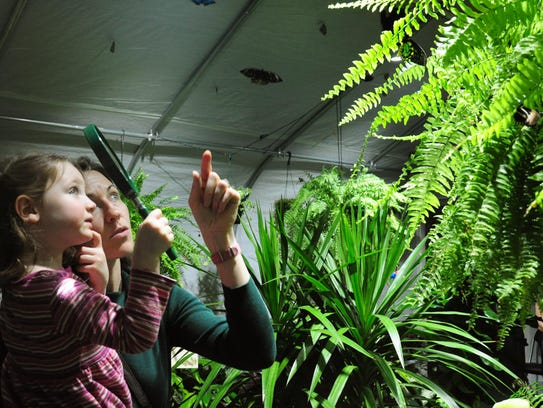 Visitors look up at the butterfly exhibit at ECHO,