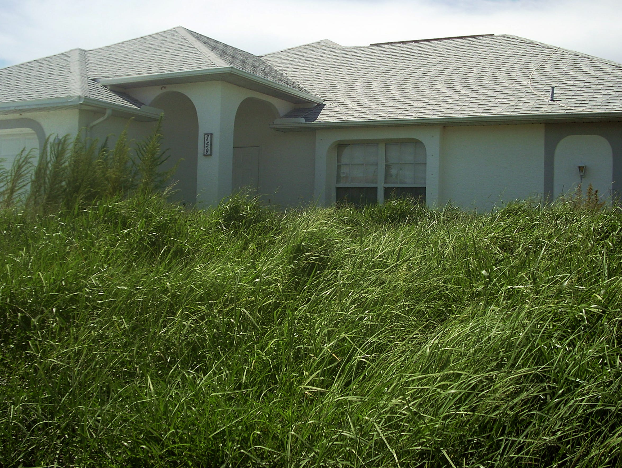 In this file photo, grass and weeds overtake a home