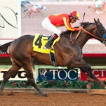 Likely Los Alamitos Futurity favorite Toews On Ice won Del Mar's Bob Hope Stakes last month.