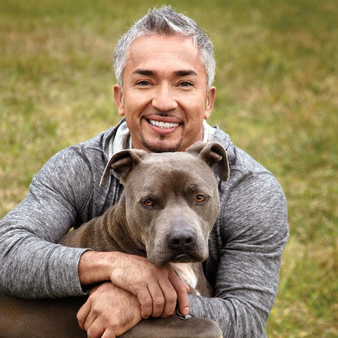 Cesar Millan performs at the Pearl at Palms theater in Las Vegas on Aug. 15. The show will be televised on Nat Geo WILD early next year.